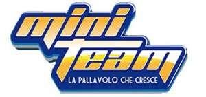 Logo MiniTeam - FIPAV Treviso