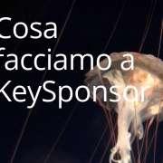 Come usare KeySponsor per cercare Sponsor
