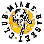Basket Miane